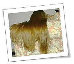 Chair Hair